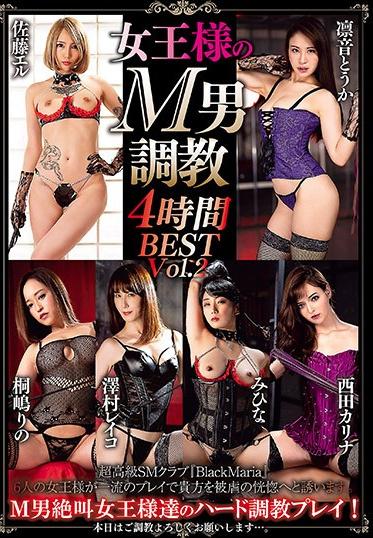 AVS collectors AVSA-165 Breaking In The Queen Is Masochistic Men 4 Hours BEST Vol 2