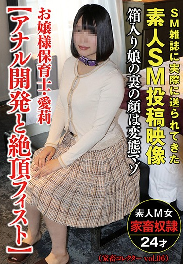 Sanwa Shuppan ACZ-008 Rich Girl Daycare Worker Airi Anal Opening Fisting To Climax Livestock Collector Vol 05